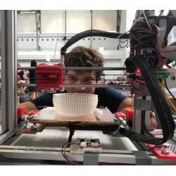 Začínáme s 3D tiskem -...